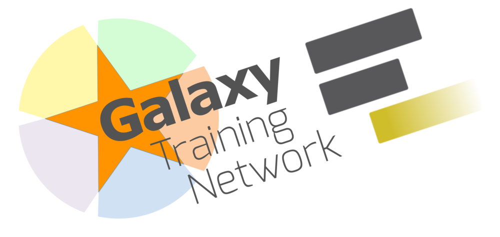 Galaxy Training Network
